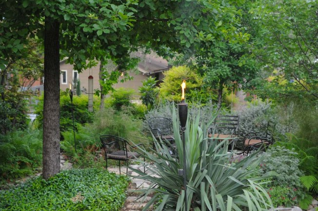 One of Austin's most beautiful yards